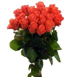 """букет 21 троянда """"Вау"""""""