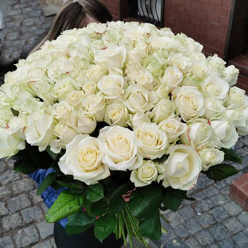 фото букета 101 біла троянда