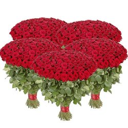 букет 501 червона троянда картинка